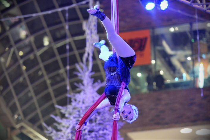 An Aerialist is performing upside down in silks during a high end, specialty show